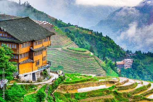 Chinese Rice Terraces in Guilin, China. Fototapet