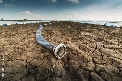 Canvas Print Dry land - drought - and hose for watering