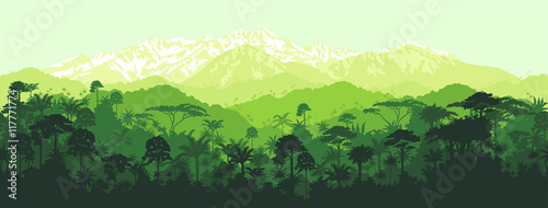 Canvas Print Vector horizontal seamless tropical rainforest Jungle with mountains background