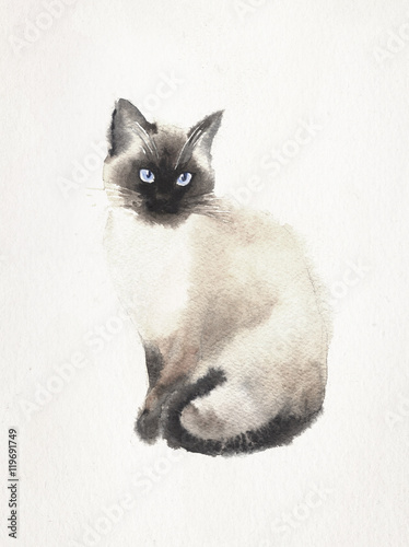 Wallpaper Mural Watercolored illustration of a Siamese cat