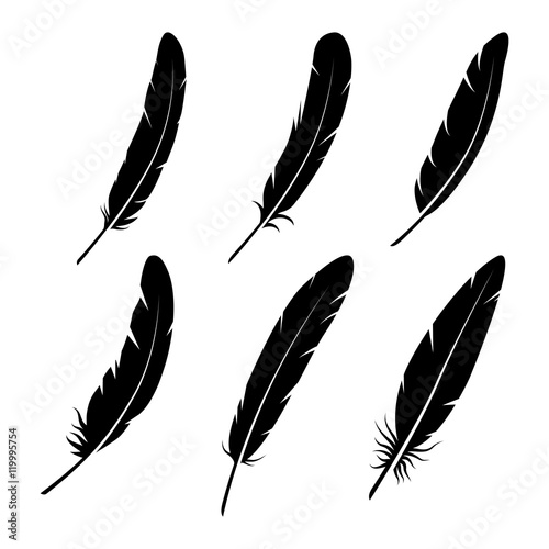 Stampa su Tela group of feather on white background