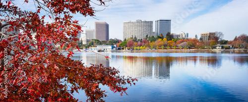 Billede på lærred Oakland, California Lake Merritt view framed by foreground red maple leaf tree
