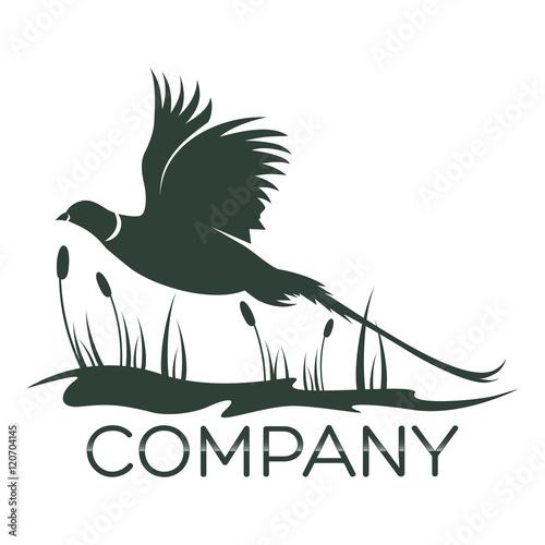 Photo pheasant logo