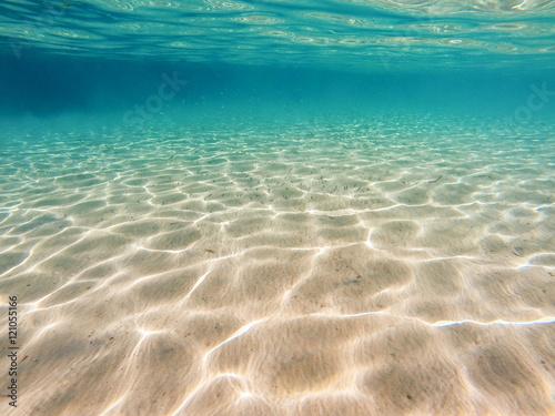 Fotografia Sea bottom