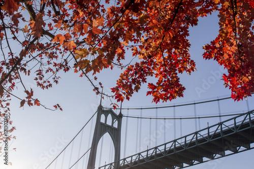 St. John's Bridge Framed by Trees