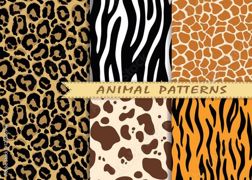 Fototapeta premium Wektor bez szwu wzorów z tekstury skóry zwierząt. Powtarzanie tła zwierząt do projektowania tekstyliów, scrapbookingu, papieru do pakowania. Wektor wydruki zwierząt.