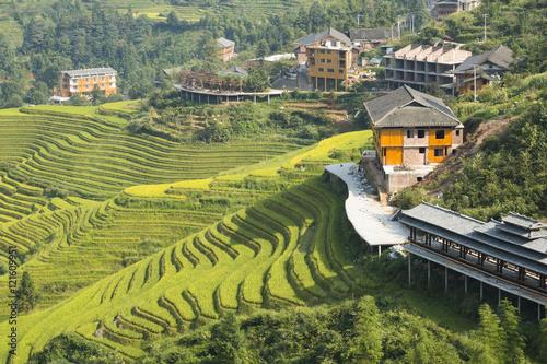 Fotografia Yaoshan Mountain, Guilin, China hillside rice terraces landscape in China