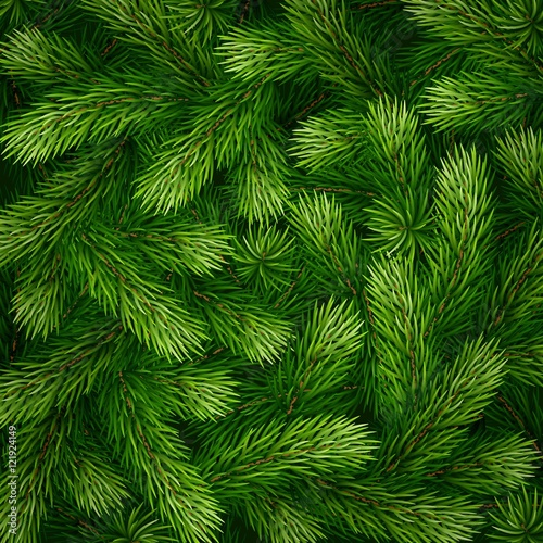 Obraz na płótnie Detailed Christmas tree branches background