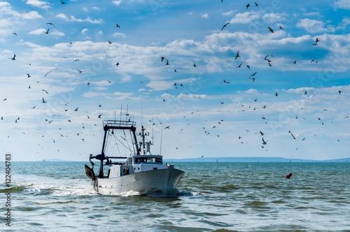 Retour de pêche d'un chalutier. Fototapeta