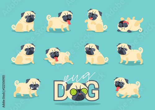 Photo Cartoon character pug dog poses. Cute Pet dog in the flat style.