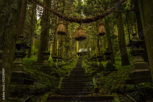 Photo Mysterious Japanese Shrine