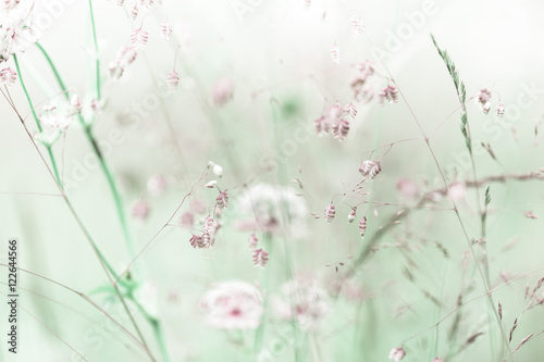 Amazing sunrise at summer meadow with wildflowers. Abstract floral background in vintage style, watercolor painting effect and blur