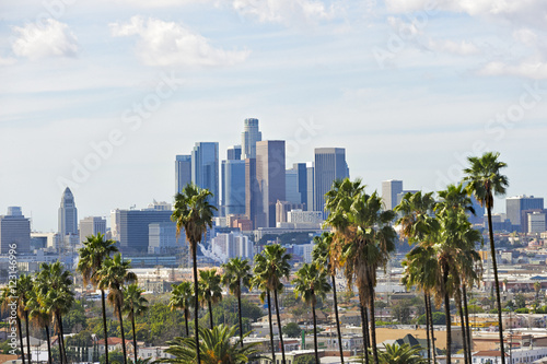 Obraz na plátně Los Angeles skyline with palm trees in the foreground
