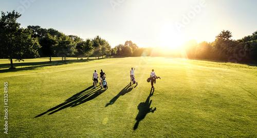 Slika na platnu 4er Golf flight