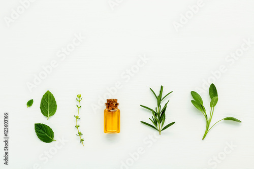 Canvas Print Bottle of essential oil with  fresh herbal sage, rosemary, thyme