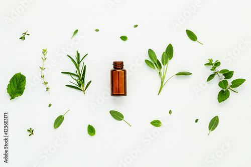 Fotografie, Obraz Bottle of essential oil with fresh herbal sage, rosemary, lemon