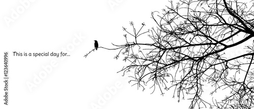 Photo Lonely bird stands on a branch of a naked tree silhouette in black and white vec