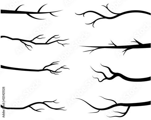 Bare tree branch silhouettes, Black branches without leaves Fototapete