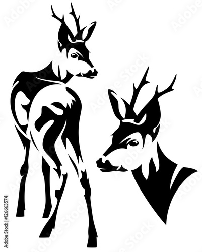 Canvas Print roe deer black and white vector design