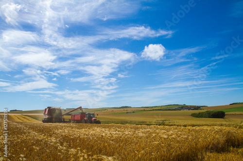 Obraz na plátně agriculture dans le Pas de Calais