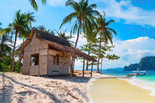 Fotografie, Tablou Scenic tropical landscape, Palawan, Philippines