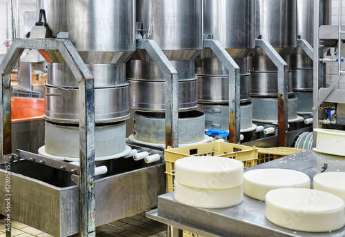 Young Gruyere Comte Cheese pressed in special forms in dairy