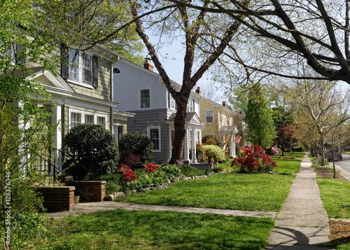 Fotografia Early spring neighborhood in Richmond, Virginia-homes, trees, plants, flowers, and sidewalk