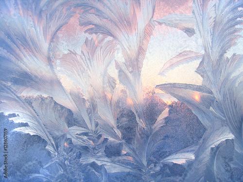 Beautiful winter pattern