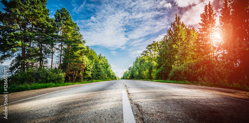 Canvas Print Sunrise beautiful road in forest