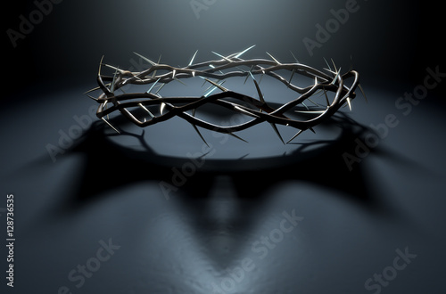 Fényképezés Crown Of Thorns With Royal Shadow