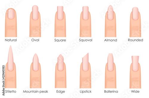 Stampa su Tela Different fashion nail shapes