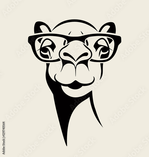 Photo hipster camel wearing glasses
