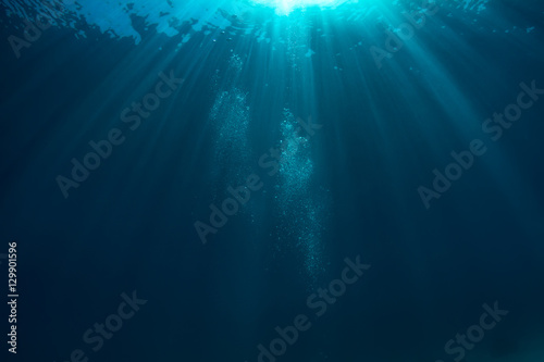 Cuadros en Lienzo Air bubbles underwater in deep blue ocean with sunrays and water surface