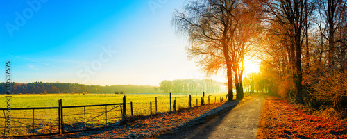 Obraz na plátně Landschaft im Herbst, Straße neben eine Weide bei Sonnenaufgang