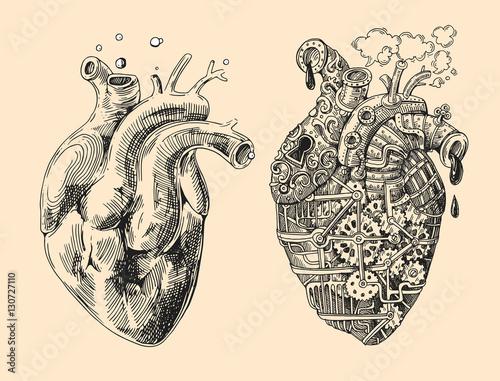 Fotografia hearts mechanical and alive