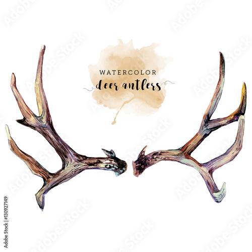 Tela Watercolor Deer Antlers