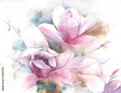 Magnolia flower tree tulip magnolia watercolor painting illustration greeting card