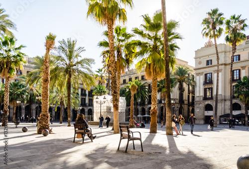 Fototapeta premium Park z palmami w Barcelonie, Hiszpania