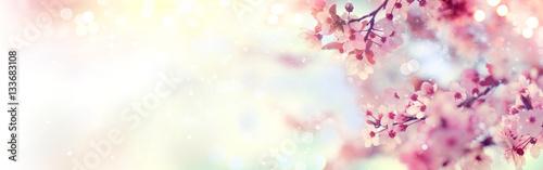 Fotografija Spring border or background art with pink blossom