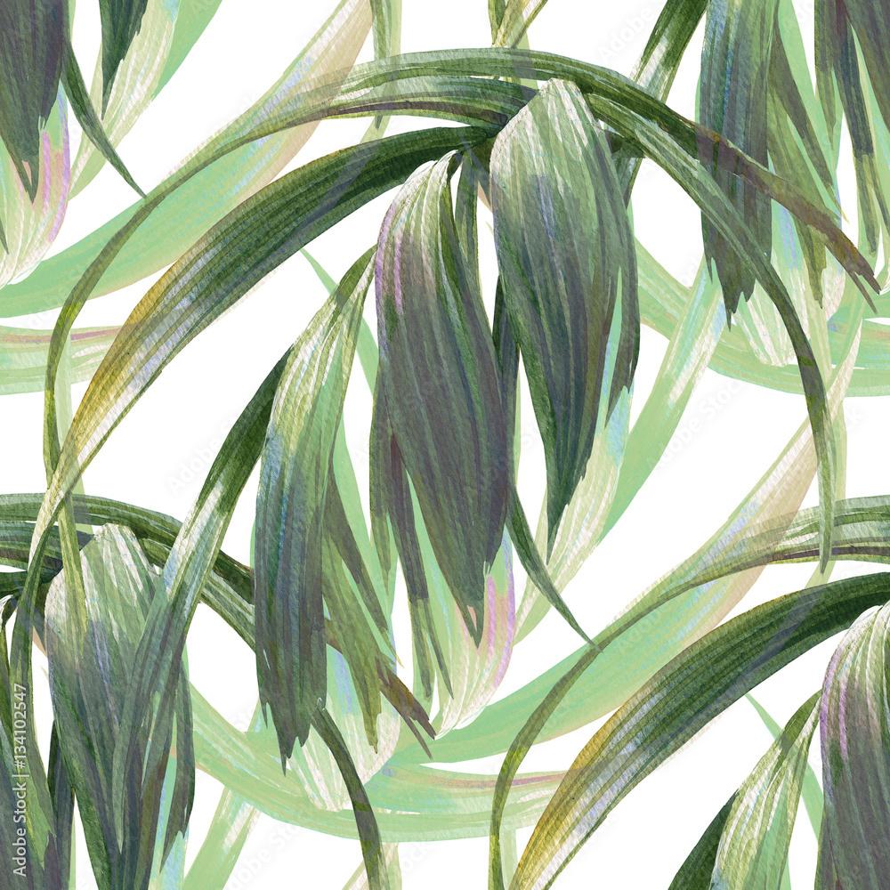 Fototapeta Malowane akwarelą liście na białym tle