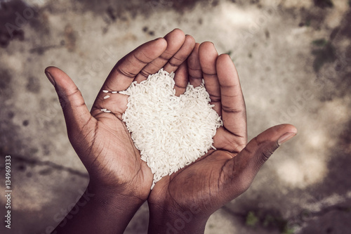 Canvas Print Hands holding rice