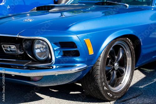 Fototapeta Blue Mustang Fender