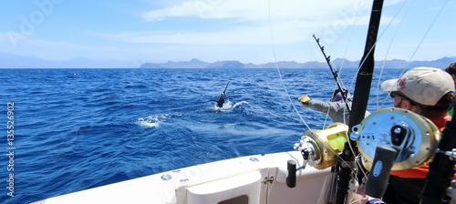 Obraz na płótnie Big game fishing. Caught a marlin jumping near the boat.