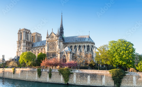 Fotografie, Obraz Notre Dame Cathedral in Paris on a bright afternoon in Spring
