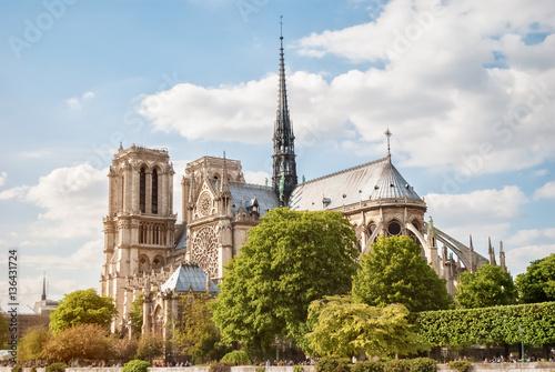 Carta da parati The Cathedral of Notre Dame de Paris, France, Spring