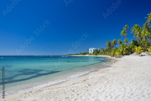 Tropical sand Beach on the Caribbean sea. Clear blue sea and high palm trees