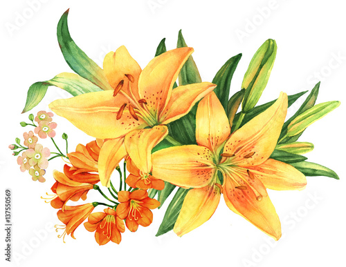 Fotografia Yellow lily flower watercolor bouquet