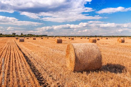 Fotografie, Tablou bales of dry straw