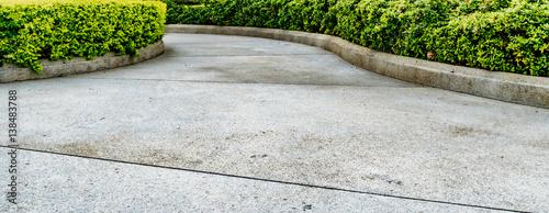 Canvas Print Concrete Pathway in garden