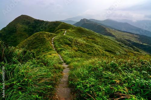 Obraz na plátně Peaceful path through green coastal hills and grasslands on the Caoling Historic